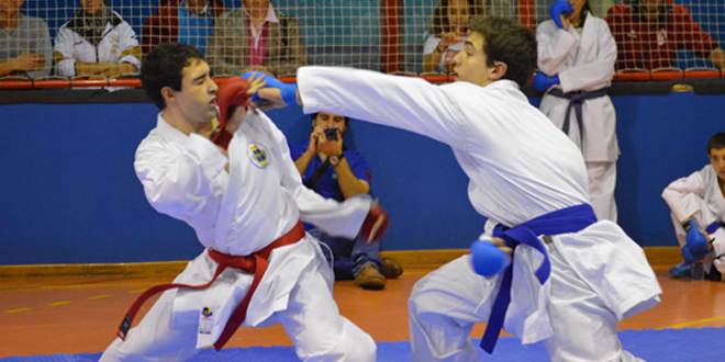 Karate adultos